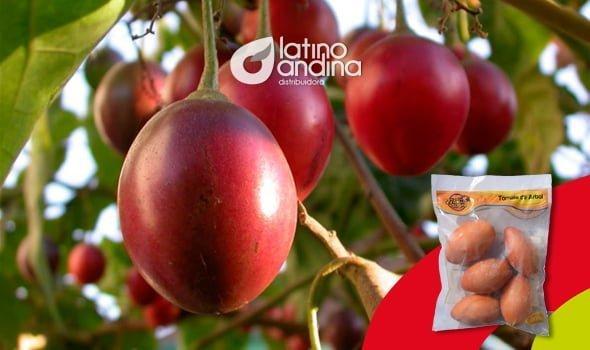 El poder antioxidante del tomate de árbol